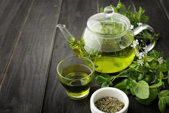 Green tea ingredient may ameliorate memory impairment, brain insulin resistance, and obesity